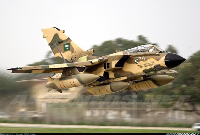 Panavia Tornado (2) (Copy).jpg