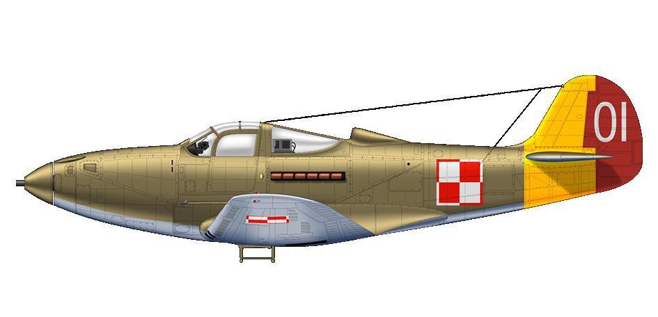 AircobraPl 00.JPG
