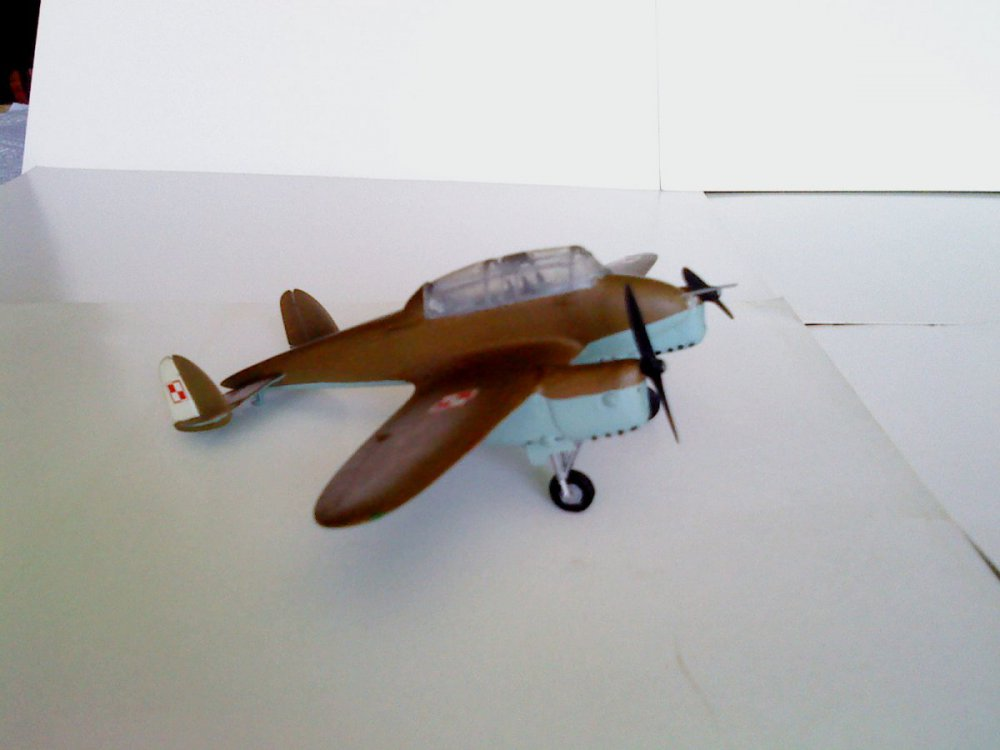 PWS-33 Wyżeł.JPG