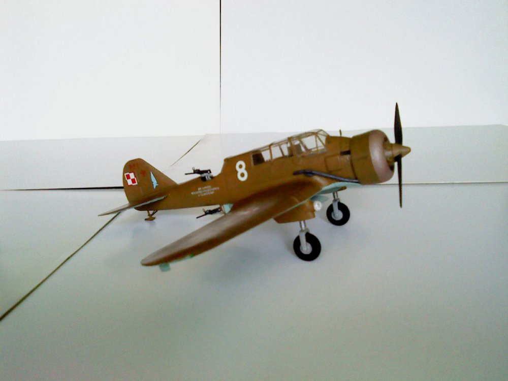 PZL.23A Karaś.JPG