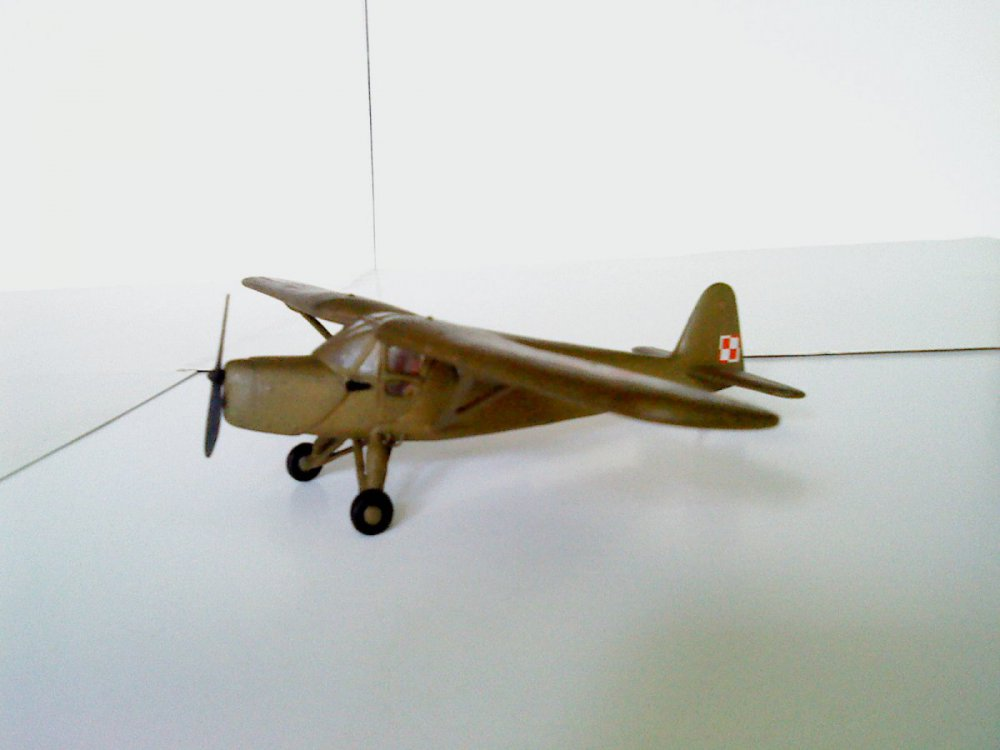 RWD-13.JPG