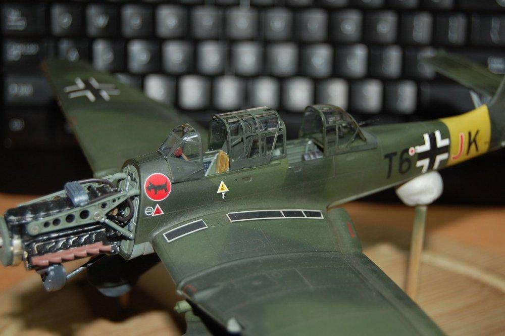 Stuka - szklarnia.JPG