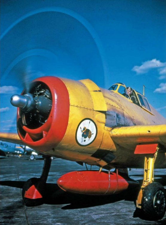 Grumman-F6F-3K-Hellcat-brightly-colored-drone-and-target-aircraft-post-war-02.thumb.jpg.12ba3ed5cb9026e5323a88f3625d23fc.jpg