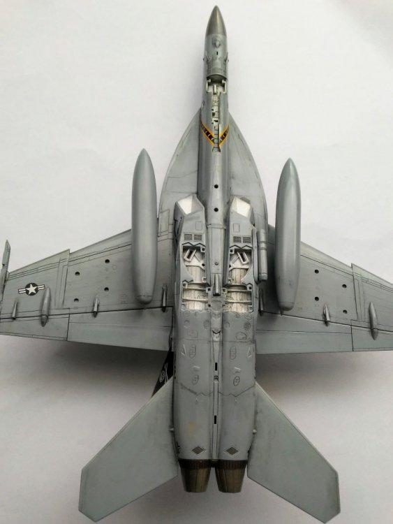 1883649298_F-18D.thumb.jpg.1f52345ca324a1e2434030d814a243f1.jpg