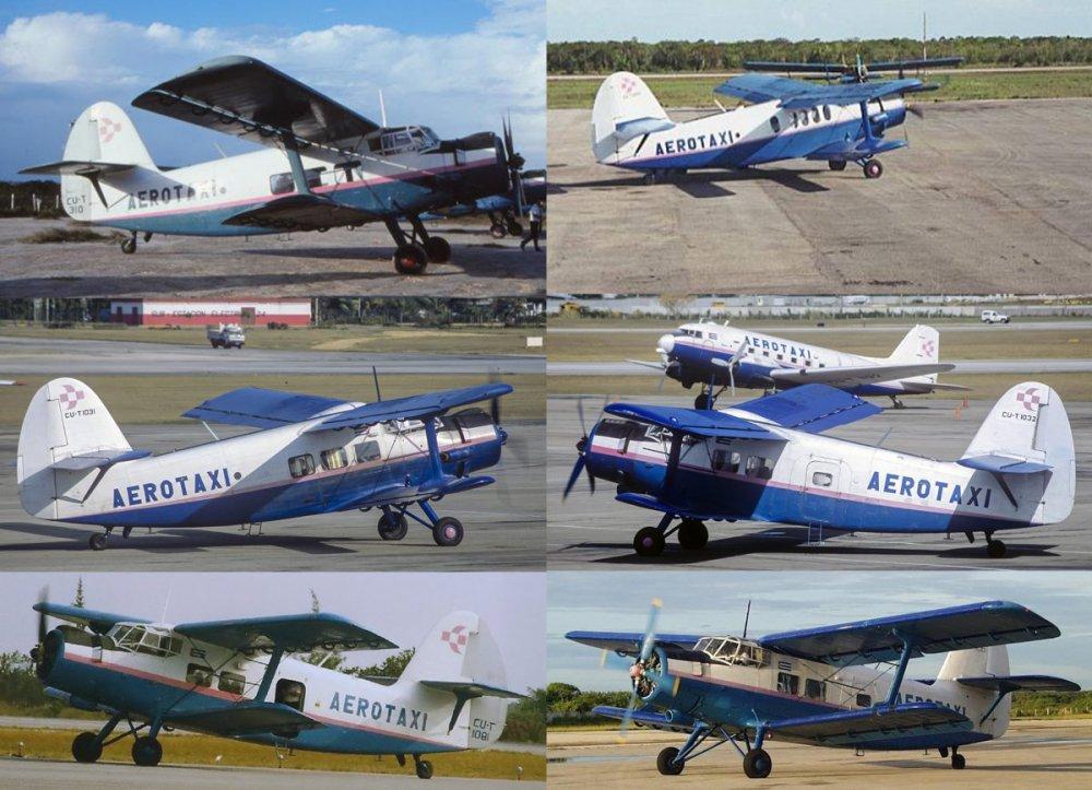 CU-T 310 i inne.jpg