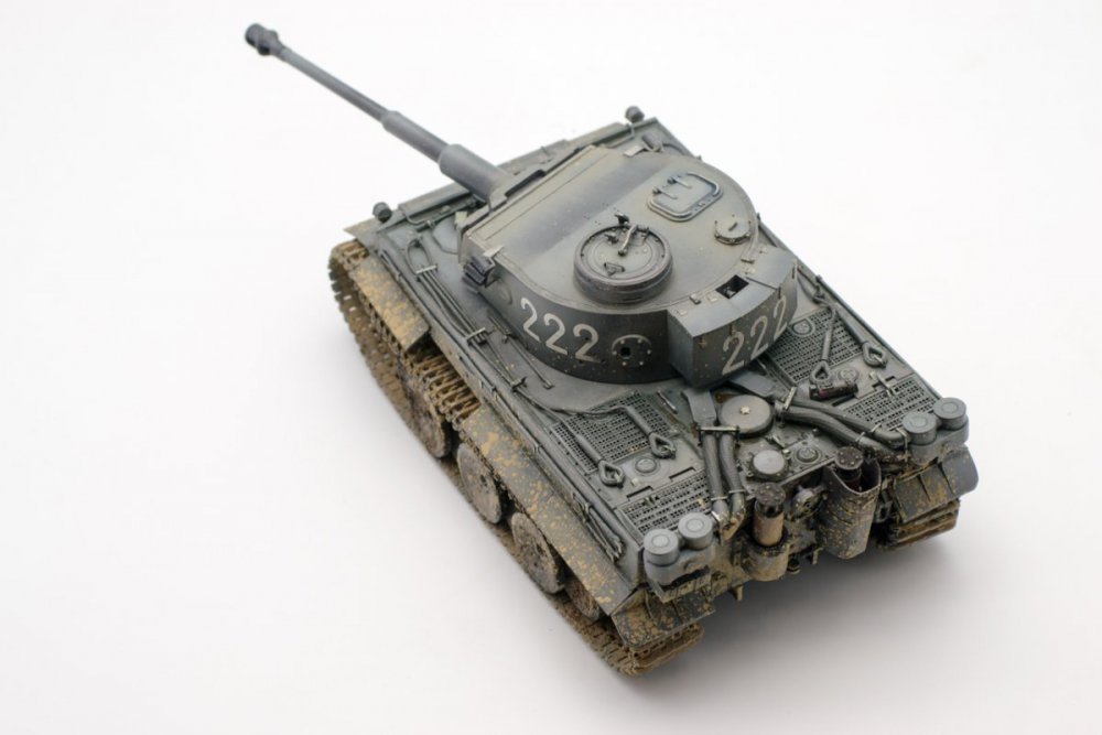 Tiger_final_05.jpg