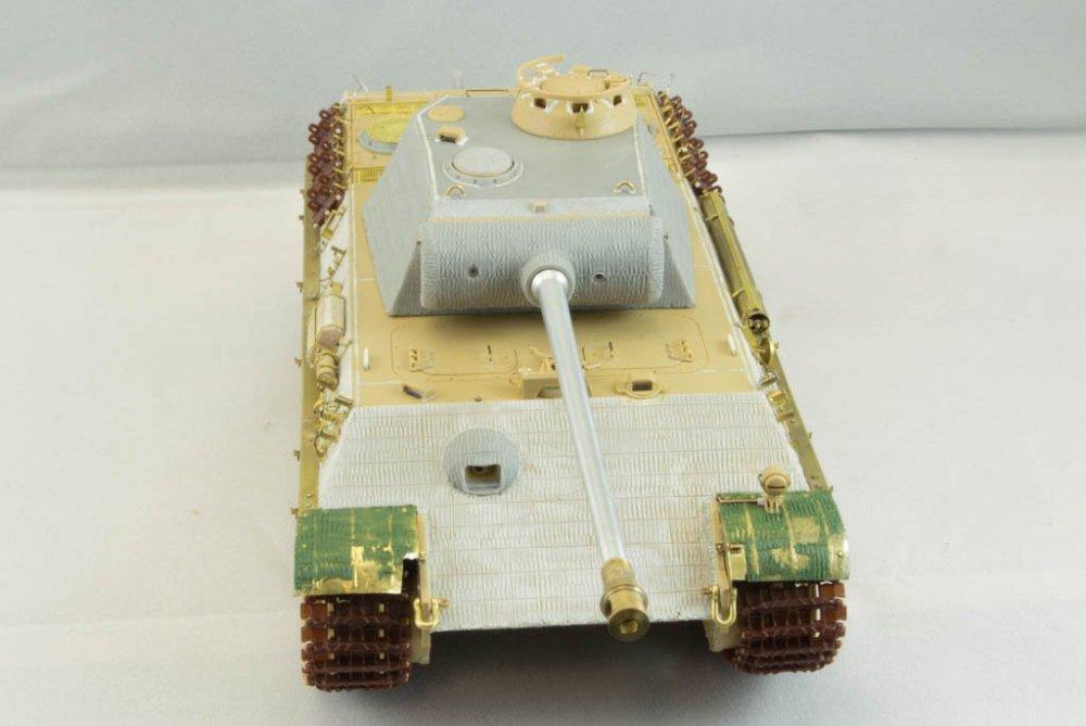 Panther-47.jpg