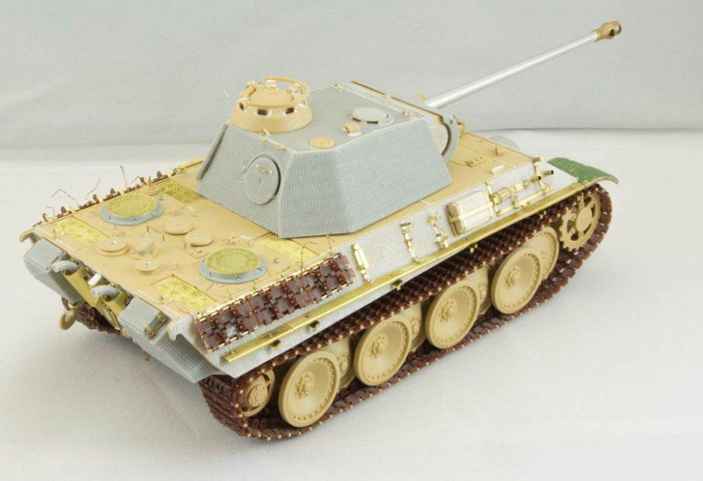 Panther-50.jpg