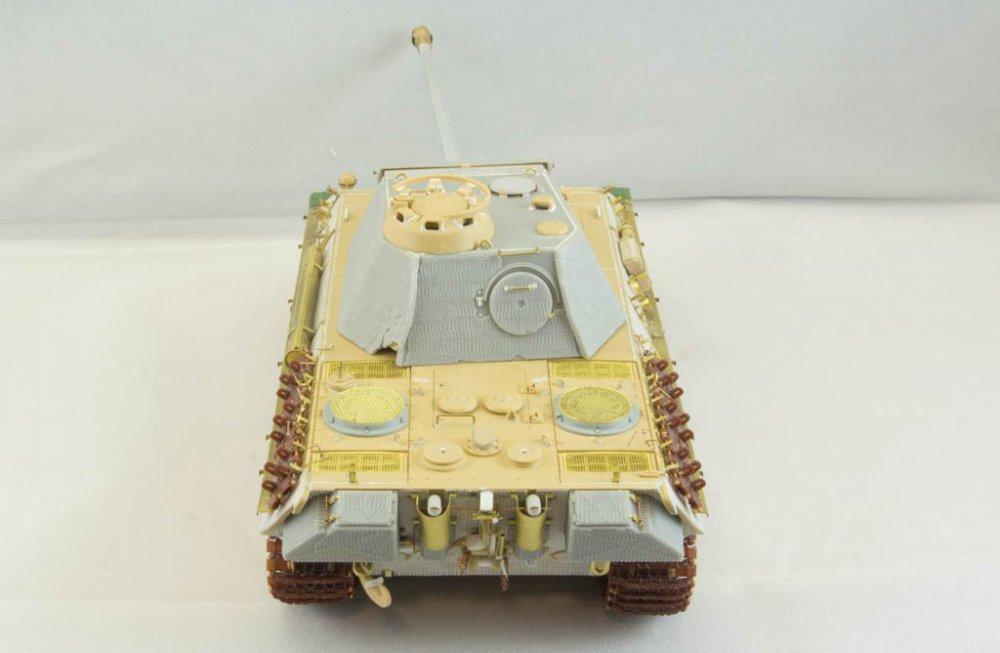 Panther-51.jpg