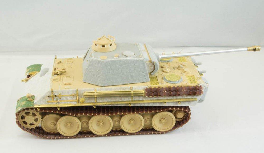 Panther-52.jpg