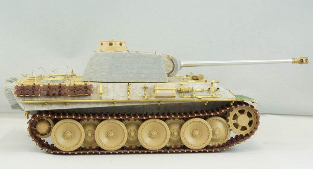Panther-53.jpg