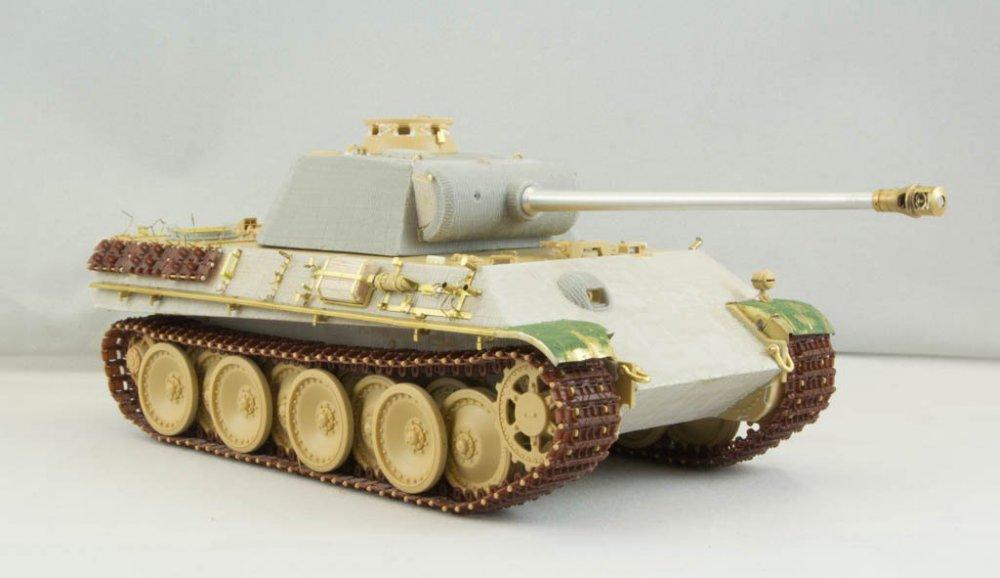 Panther-56.jpg