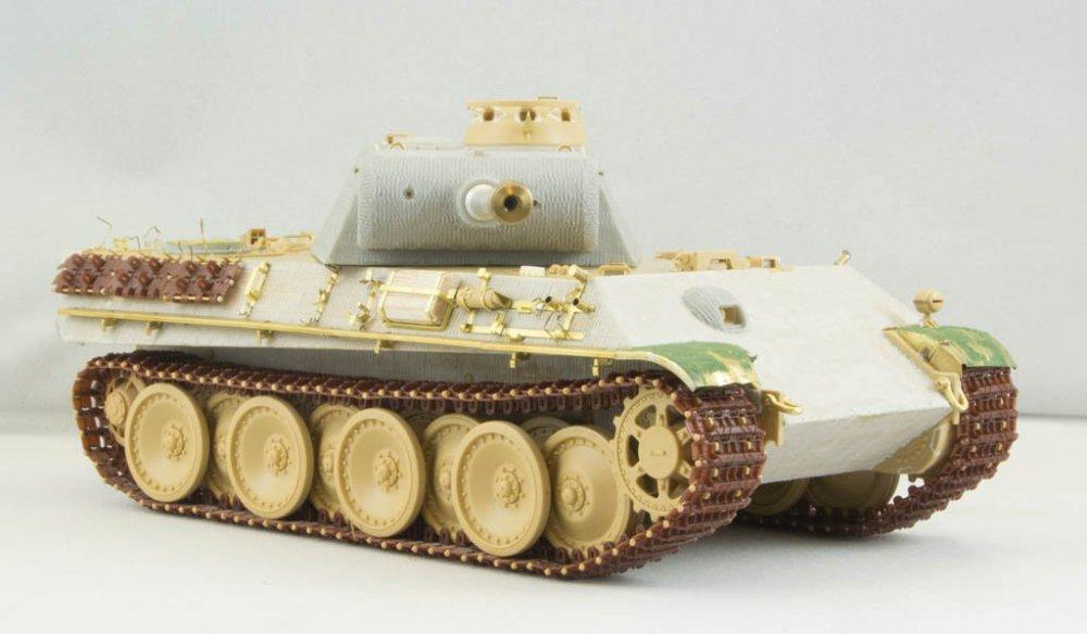 Panther-57.jpg