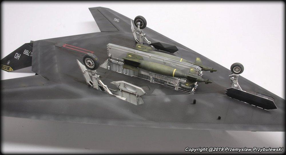 1597139719_Model_054-F-117ANighthawk016.thumb.jpg.c89a07631264c5972703acef48b39082.jpg