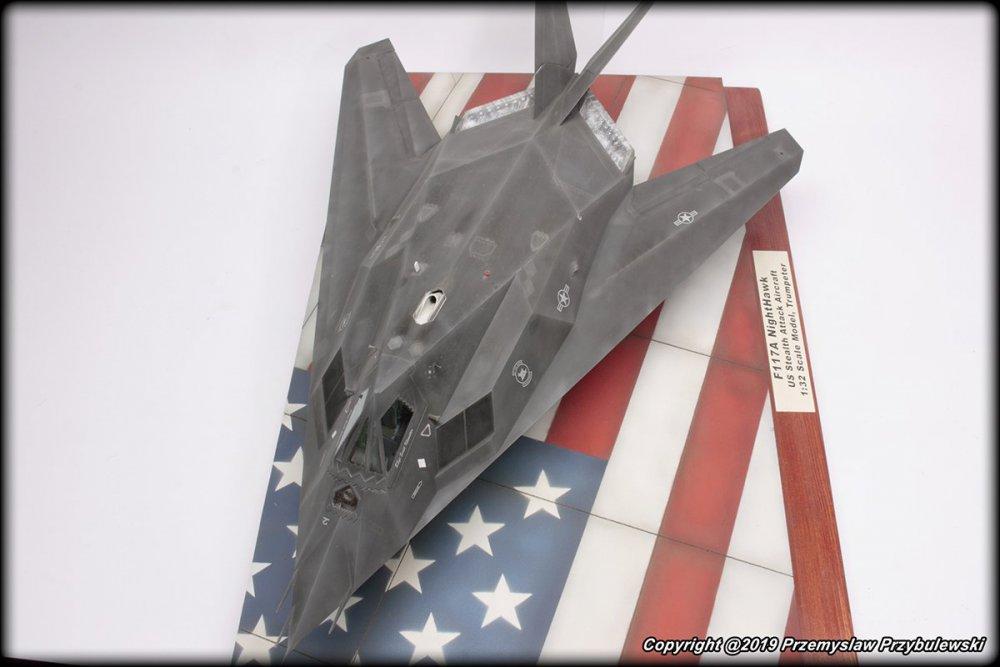 234454164_Model_054-F-117ANighthawk003.thumb.jpg.3f04e2d7a0b3fdfa40110da2984b1a27.jpg