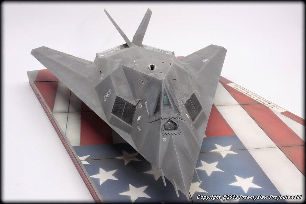 42655516_Model_054-F-117ANighthawk004.thumb.jpg.aab31fe36e9376523b931cda7fca8723.jpg