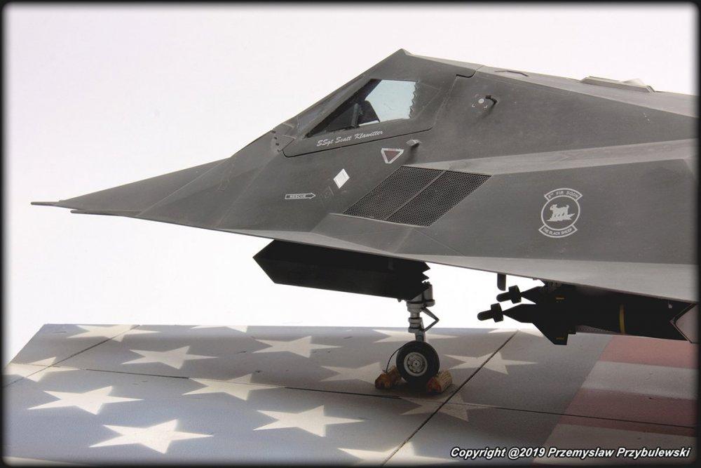 512738836_Model_054-F-117ANighthawk011.thumb.jpg.ed316b34a55d4da18fb60e0f247bcc97.jpg