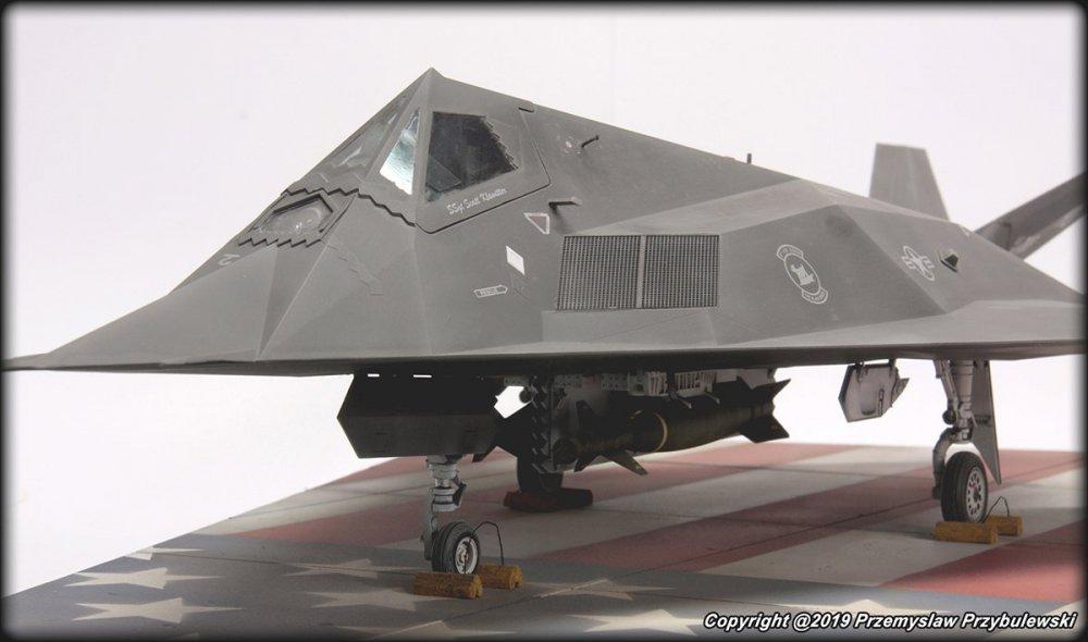 524030735_Model_054-F-117ANighthawk009.thumb.jpg.34e91d43b1da370de4e0861423290eab.jpg