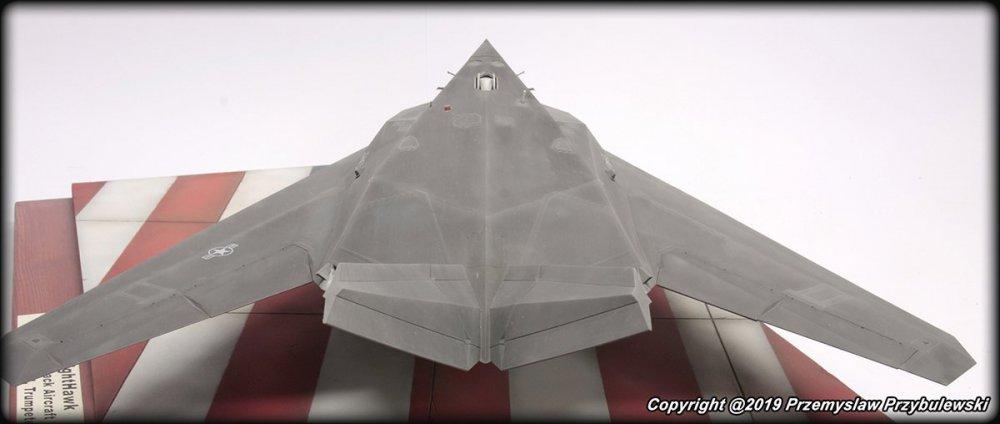 565690244_Model_054-F-117ANighthawk008.thumb.jpg.e25a6dd44aac241d490da1650082e4ab.jpg