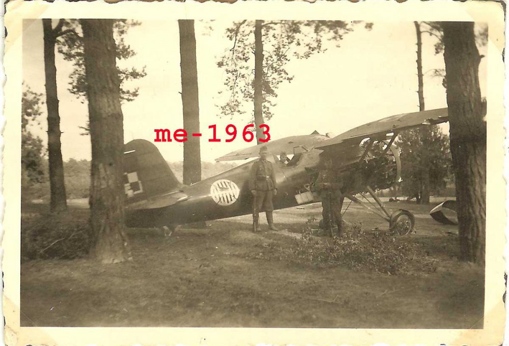 POLEN_Jagdflugzeug_I.thumb.jpg.a31192f0e9a7f1e30a3e0bf8f88d7c8f.jpg