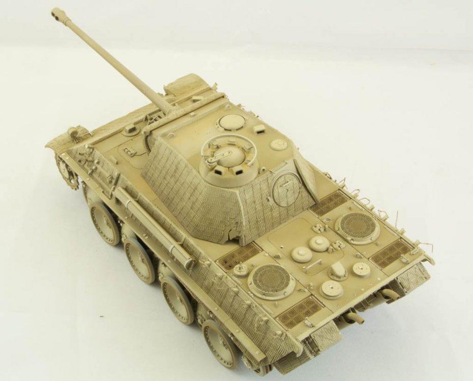 Panther-62.thumb.jpg.76b0dd69addb66ded7e6212c52e79122.jpg