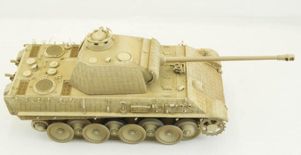 Panther-63.thumb.jpg.7076ad0c225f826b743e13b911d8c7f4.jpg