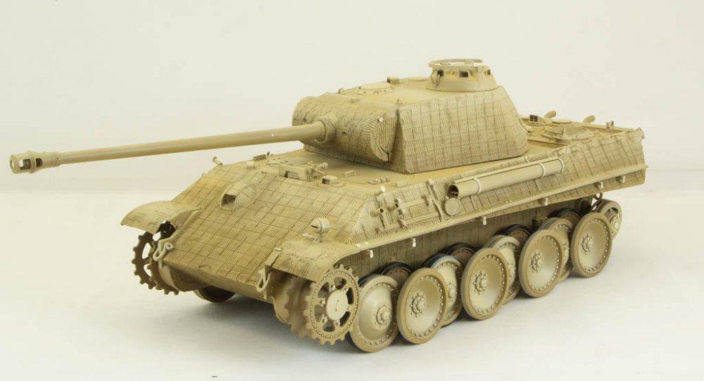 Panther-65.thumb.jpg.036cebf2fb3e19aca212ad5516d09b89.jpg