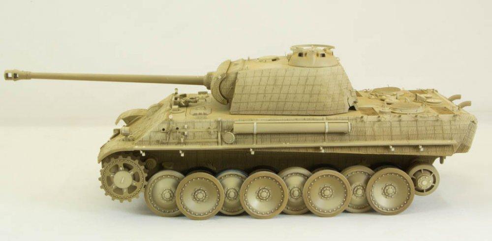 Panther-66.thumb.jpg.efdacceefadbf23bfd8f95d3fa1eb652.jpg