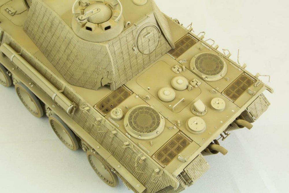 Panther-68.thumb.jpg.42c9eaec2572bc591d6318936db161bb.jpg