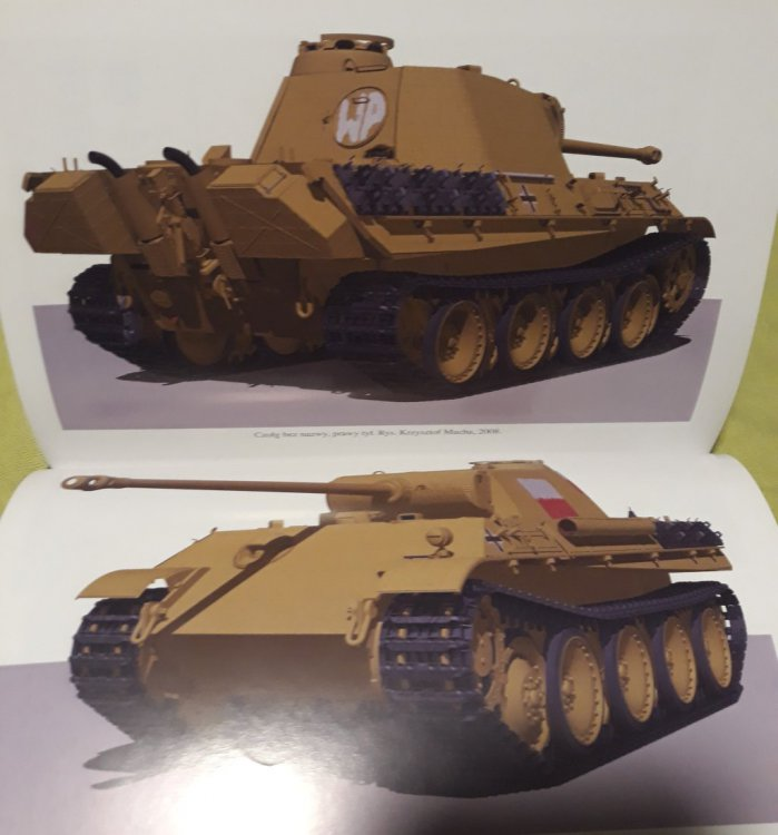 Panther-70.thumb.jpg.b60b4f2360c81ae23ee8089c60378524.jpg