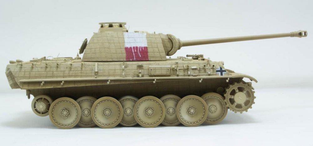 Panther-71.thumb.jpg.2e7e0972967b0b9521d36be5a201a5d5.jpg