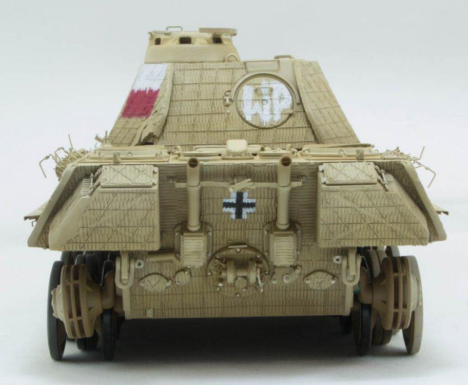 Panther-72.thumb.jpg.cf02d021d1be39456124634ba383ee48.jpg