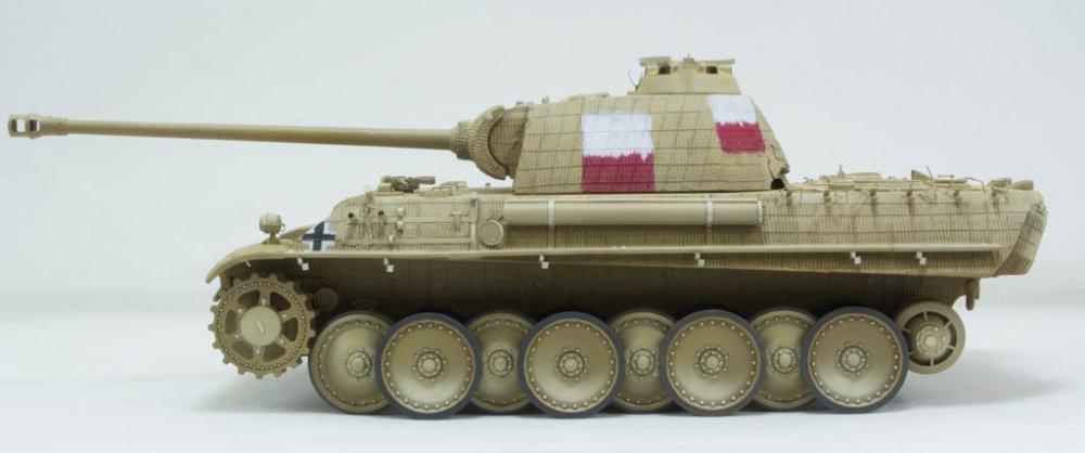 Panther-73.thumb.jpg.238b4f43437b0f939ca85840b3b911ce.jpg