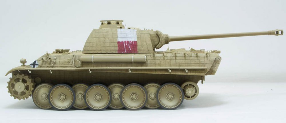 Panther-74.thumb.jpg.1c08663e335475680f451fd89e4f7706.jpg