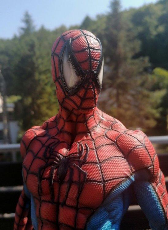 spider 18.jpg