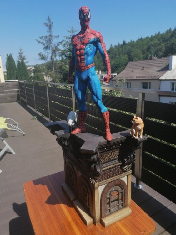 spider 21.jpg