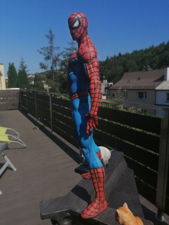 spider 20.jpg