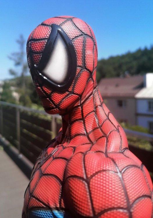spider 19.jpg