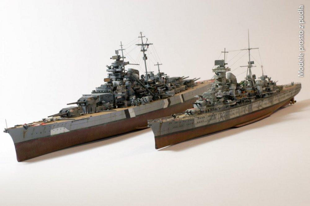 890193199_PrinzEugen-Bismarck2.thumb.jpg.cf9302e9a6d3d9bd69001f7324a4c600.jpg