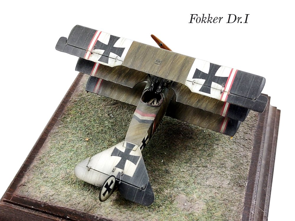 Fokker DI.jpg