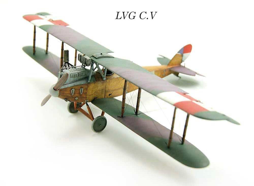 Lvg-CV.jpg