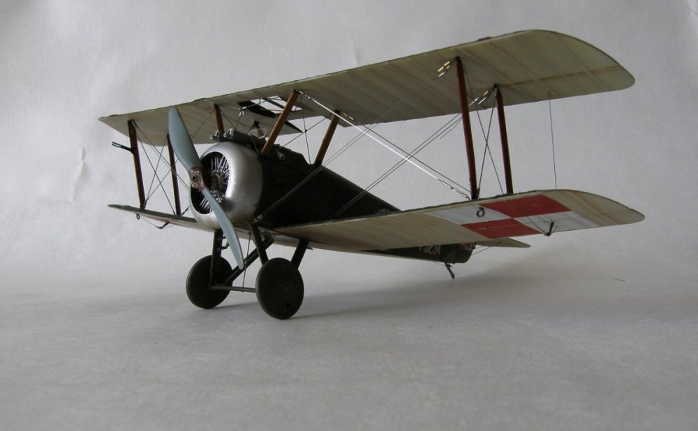 P9110301.JPG