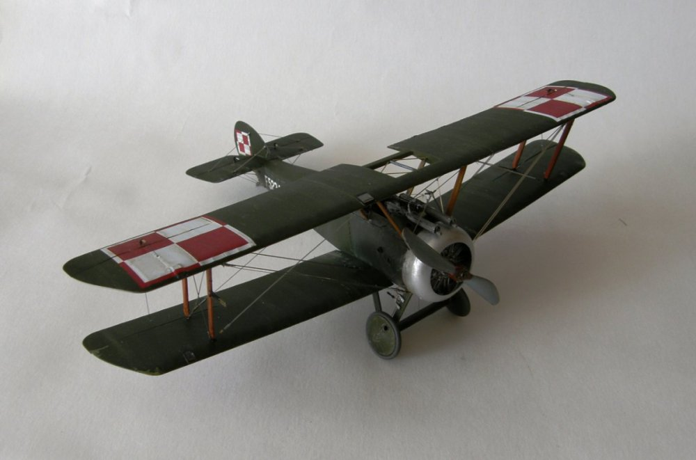 P9110307.JPG