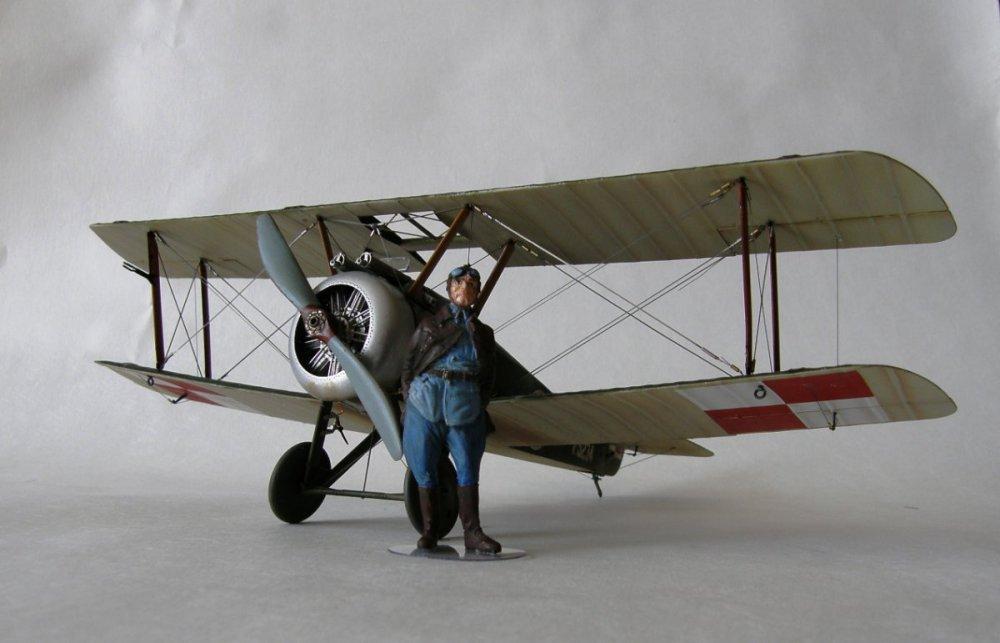 P9110309.JPG