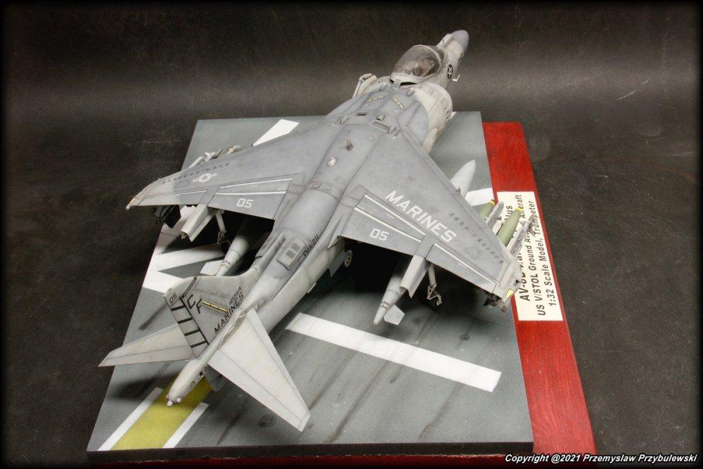 197734729_Model_070-AV-8BHarrierIIPlus007.thumb.JPG.92f7e78c68b7ec364489831cc68e1fa2.JPG