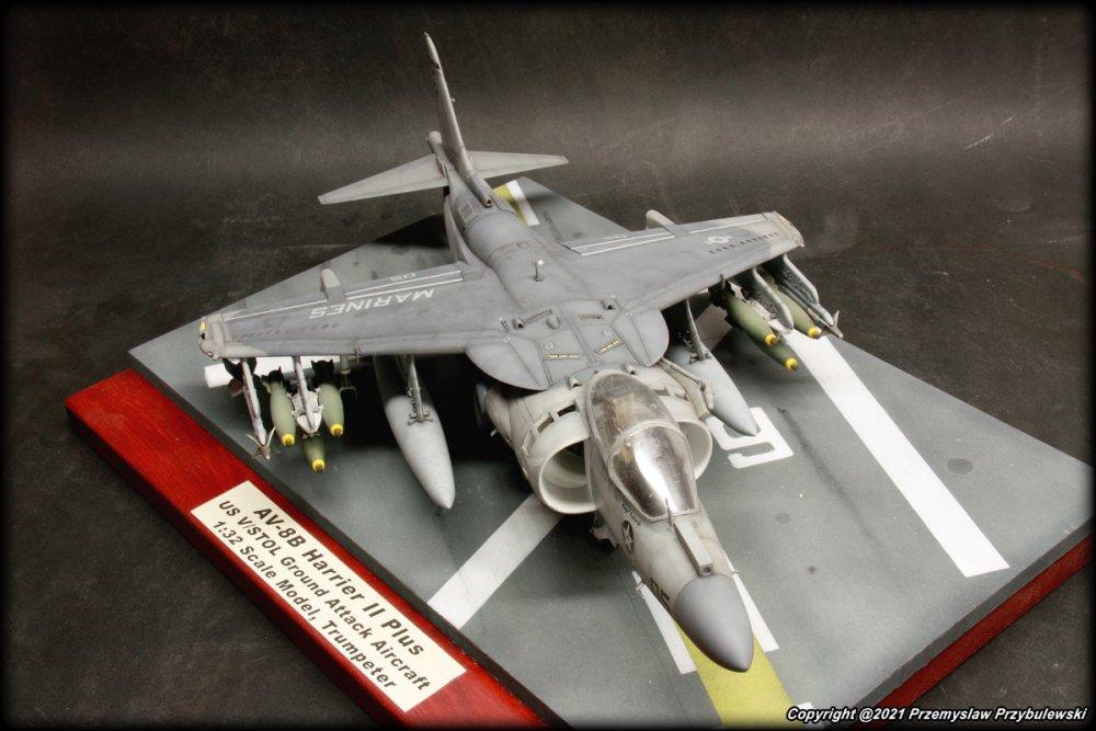 1981176424_Model_070-AV-8BHarrierIIPlus002.thumb.JPG.52138476ab97753e3b5a3bd131001bc1.JPG