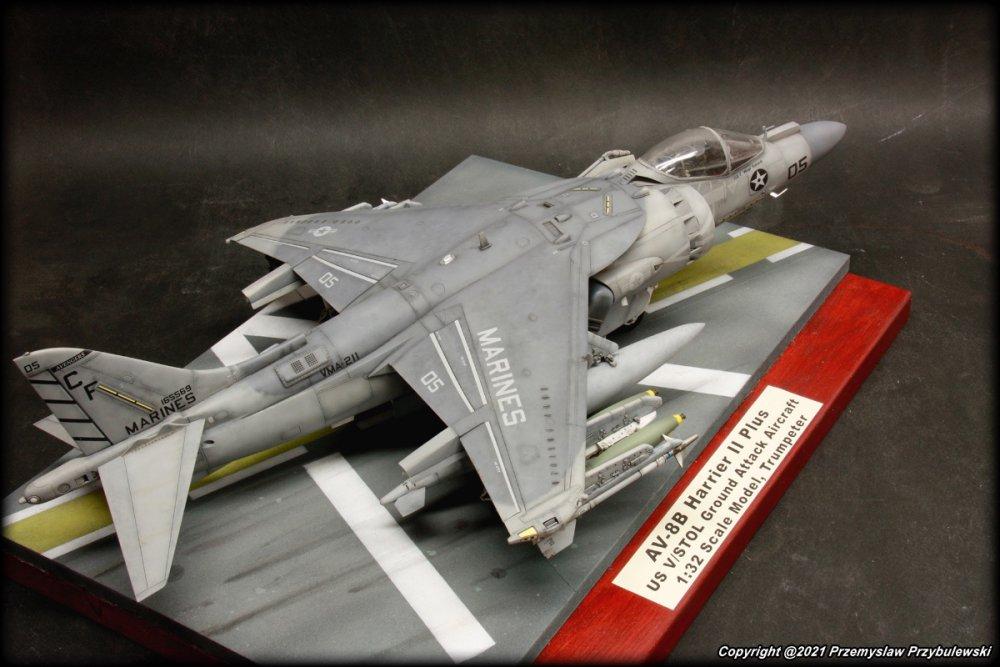 2012407019_Model_070-AV-8BHarrierIIPlus008.thumb.JPG.64e1ca4c8191d1cff3cd8f4ce651451e.JPG